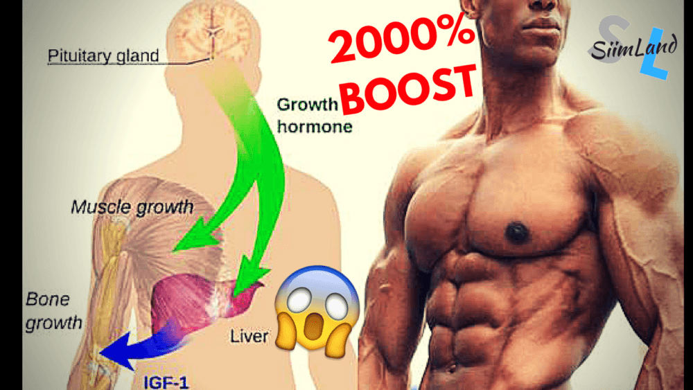 How To Naturally Increase Your Human Growth Hormone