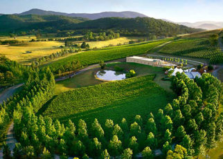 Melbourne Winery Tour