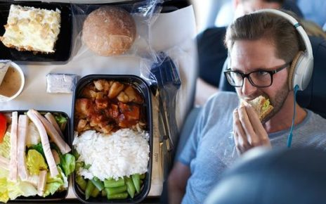Airline Meal Information For Passengers