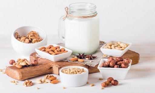 India Dairy Alternative Market